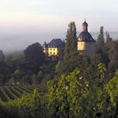 eventlocations: Schloss Vollrads