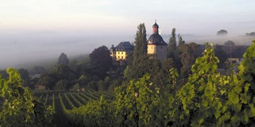 eventlocations mieten - Locationtyp: Burg/Schloss - Schloss Vollrads